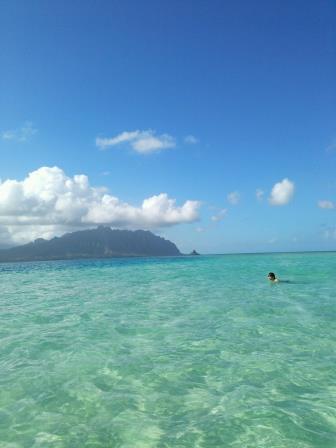 中嶌サンゴバーの写真